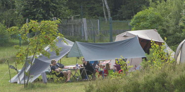 Naturcamping Ellbogensee | Naturcampingplatz zum Entpannen